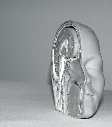 plastic-model-head-2-1425190